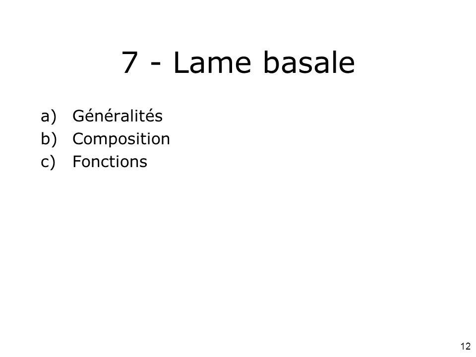 12 7 - Lame basale a)Généralités b)Composition c)Fonctions