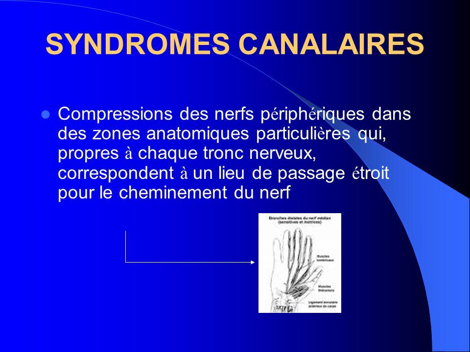 SYNDROMES CANALAIRES Compressions des nerfs p é riph é riques dans des zones anatomiques particuli è res qui, propres à chaque tronc nerveux, correspo