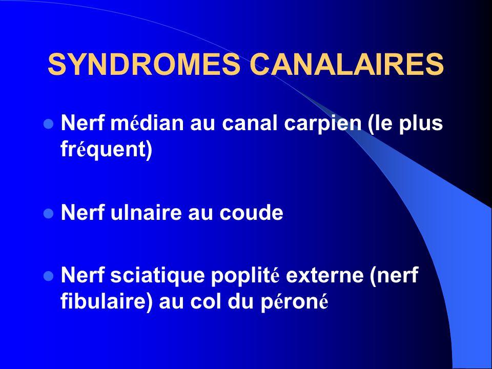 SYNDROMES CANALAIRES Nerf m é dian au canal carpien (le plus fr é quent) Nerf ulnaire au coude Nerf sciatique poplit é externe (nerf fibulaire) au col