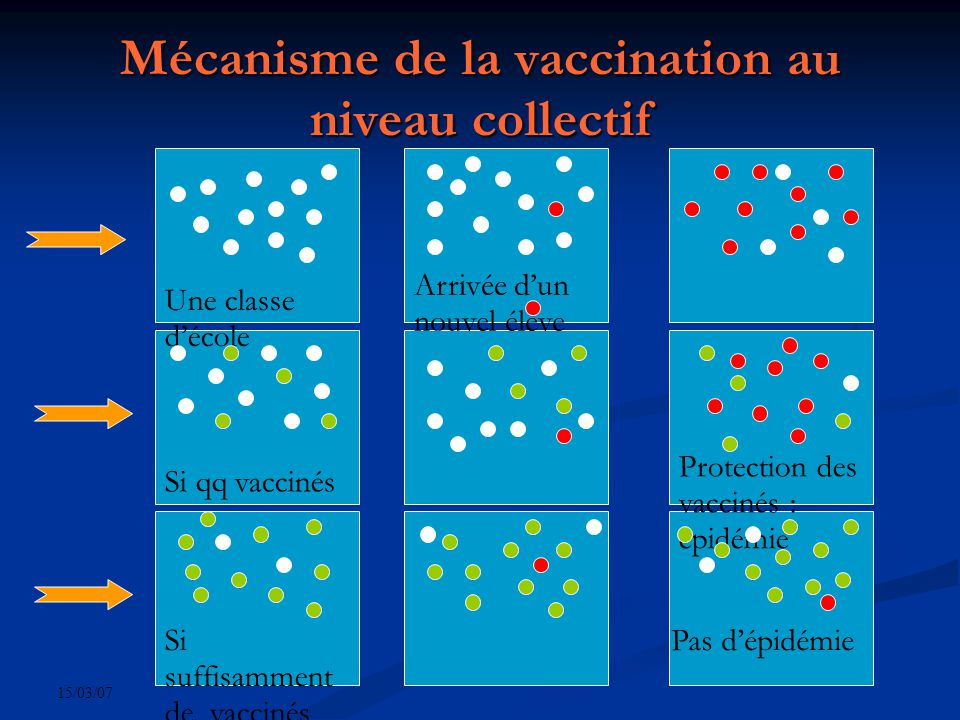 15/03/07 Contre-indications Temporaires : ajournent la vaccination Temporaires : ajournent la vaccination Hyperthermie Hyperthermie Maladie infectieuse aiguë évolutive Maladie infectieuse aiguë évolutive Définitives : éliminent la vaccination Définitives : éliminent la vaccination Déficit immunitaire congénital ou acquis Déficit immunitaire congénital ou acquis Allergie à un des composants Allergie à un des composants
