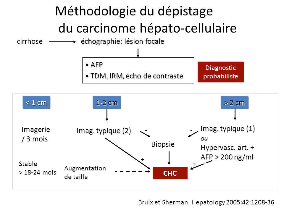 échographie: lésion focale < 1 cm 1-2 cm > 2 cm Biopsie Imagerie / 3 mois CHC Augmentation de taille cirrhose AFPAFP TDM, IRM, écho de contrasteTDM, IRM, écho de contraste Imag.