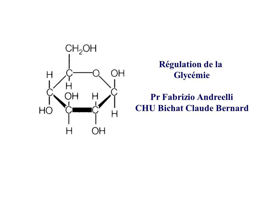 Régulation de la Glycémie Pr Fabrizio Andreelli CHU Bichat Claude Bernard