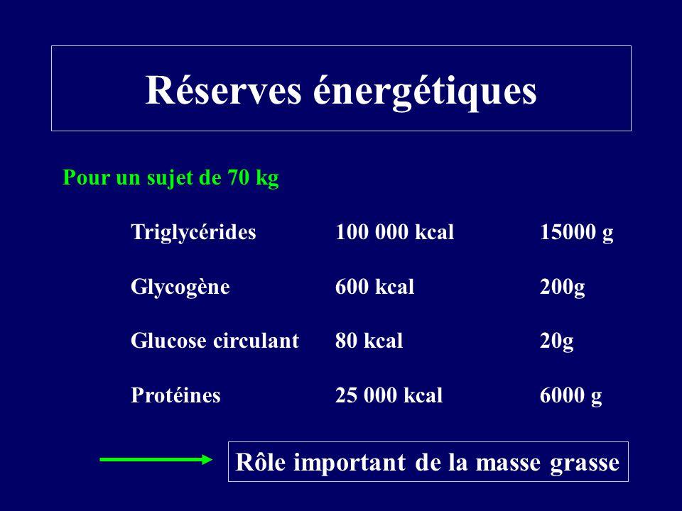 Réserves énergétiques Pour un sujet de 70 kg Triglycérides100 000 kcal15000 g Glycogène600 kcal200g Glucose circulant80 kcal20g Protéines25 000 kcal60