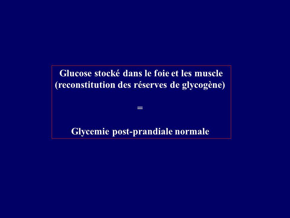 Glucose stocké dans le foie et les muscle (reconstitution des réserves de glycogène) = Glycemie post-prandiale normale