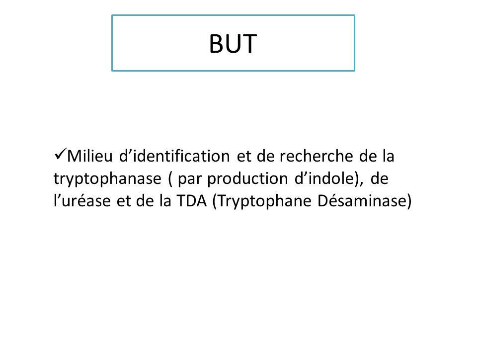 BUT Milieu didentification et de recherche de la tryptophanase ( par production dindole), de luréase et de la TDA (Tryptophane Désaminase)