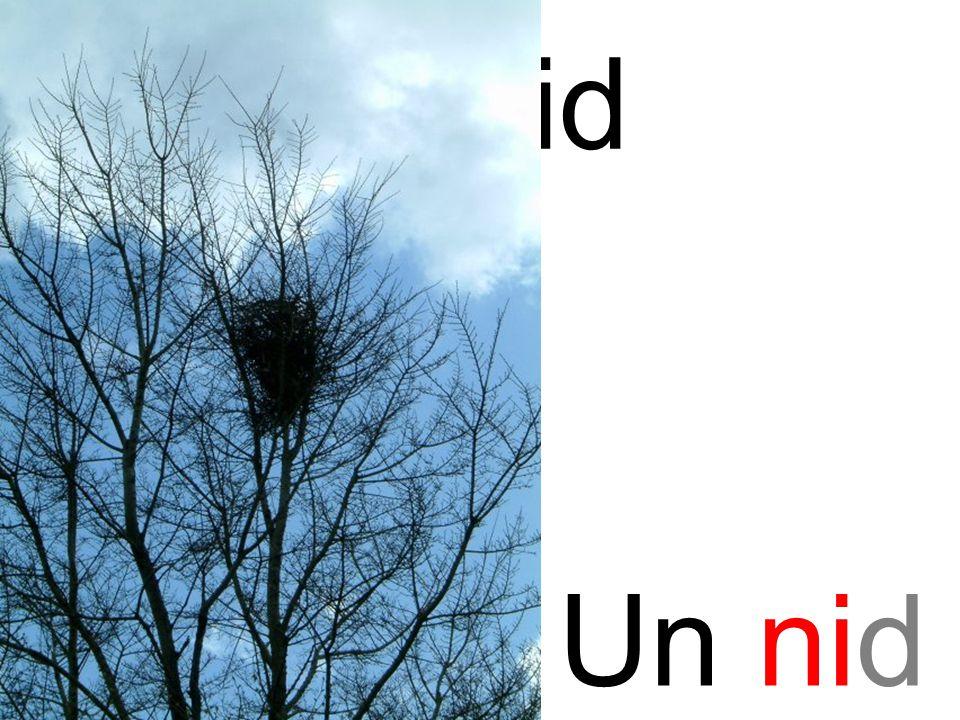 ni nid Un nid