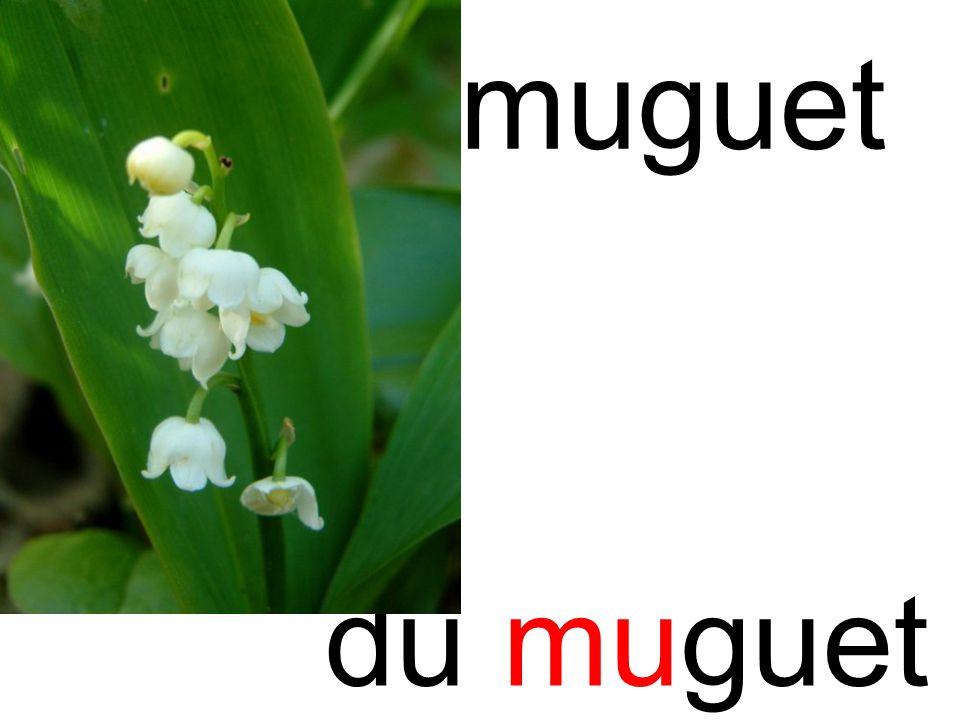 mu muguet du muguet