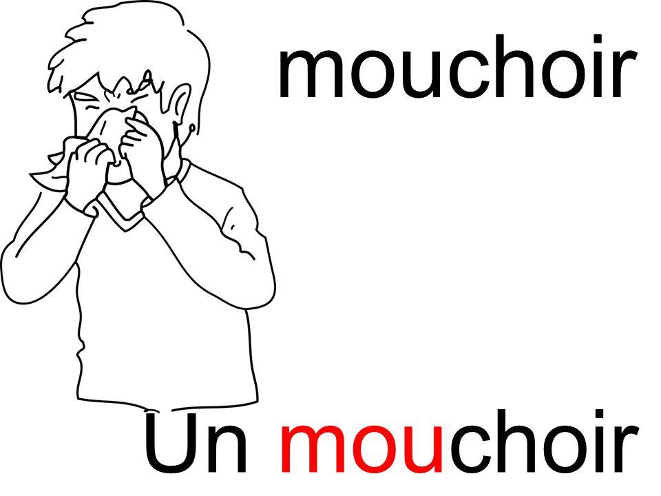 mou mouchoir Un mouchoir