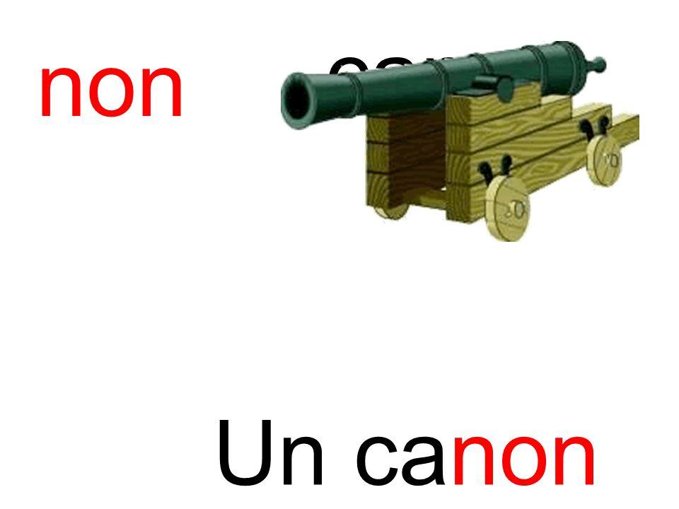 non canon Un canon