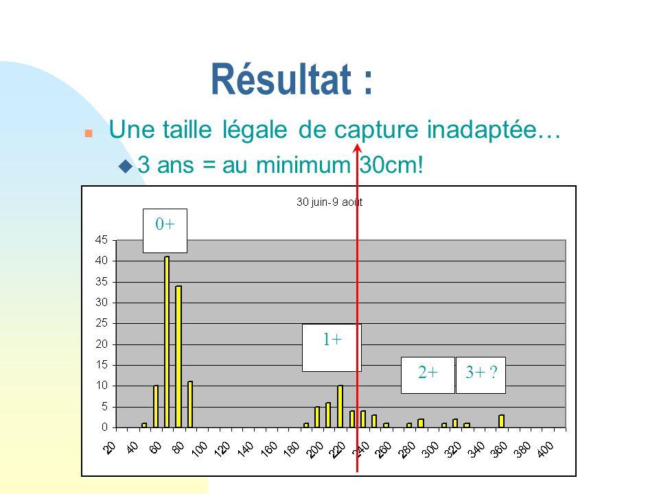 Résultat : n Une taille légale de capture inadaptée… u 3 ans = au minimum 30cm! 0+ 1+ 2+3+ ?