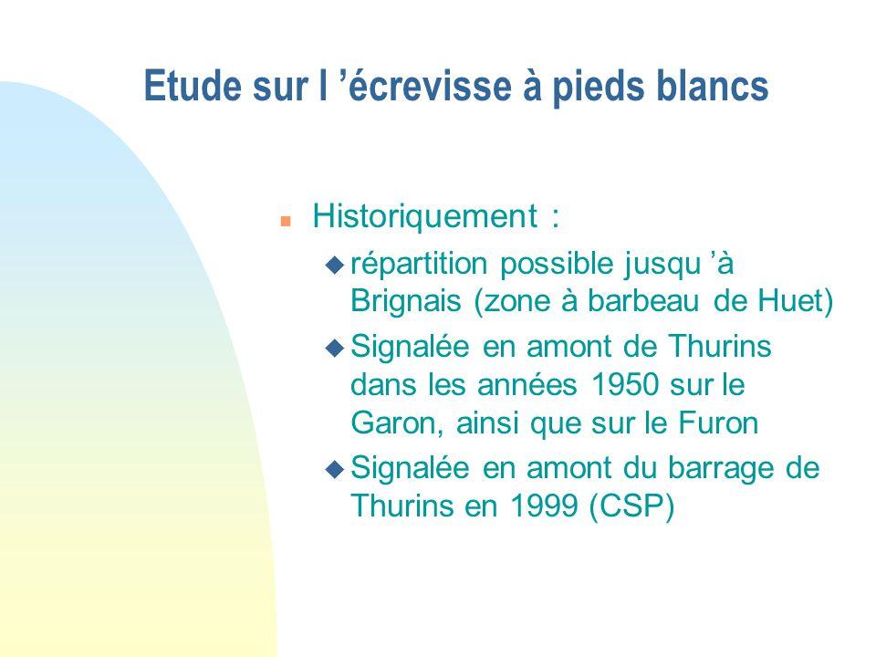 Etude sur l écrevisse à pieds blancs n Historiquement : u répartition possible jusqu à Brignais (zone à barbeau de Huet) u Signalée en amont de Thurin