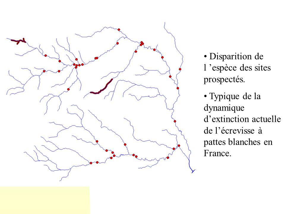Disparition de l espèce des sites prospectés. Typique de la dynamique dextinction actuelle de lécrevisse à pattes blanches en France.