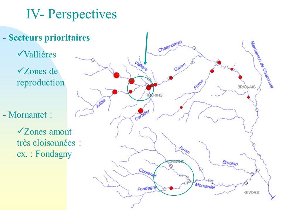 IV- Perspectives - Secteurs prioritaires Vallières Zones de reproduction - Mornantet : Zones amont très cloisonnées : ex. : Fondagny