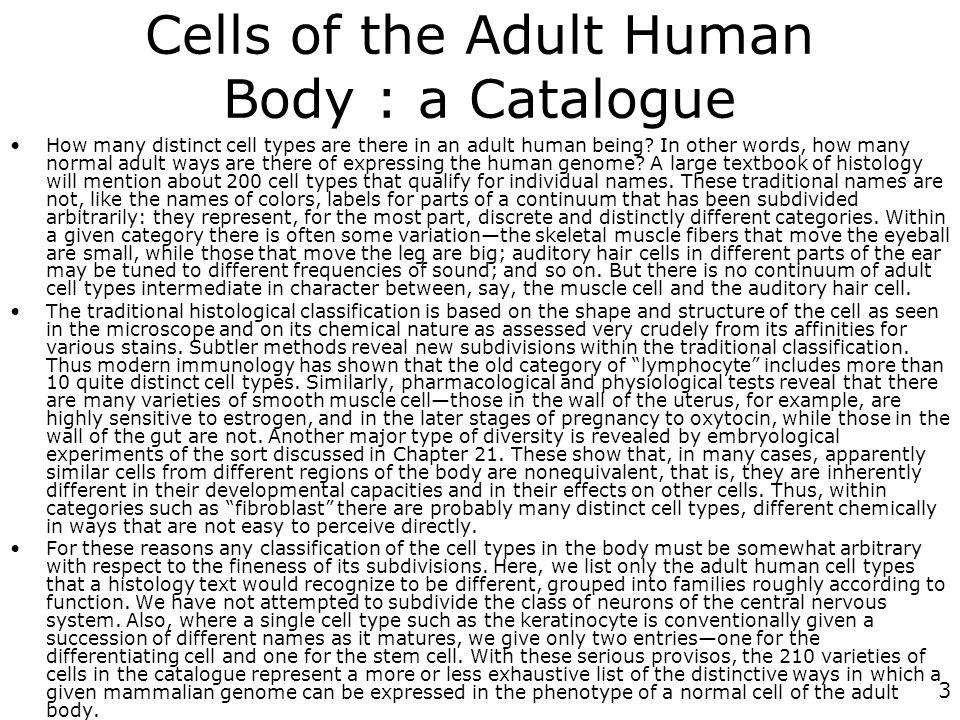 84 …Intérêt en biologie du développement Les processus du développement continuent chez ladulte Équilibre entre développement et apoptose chez ladulte