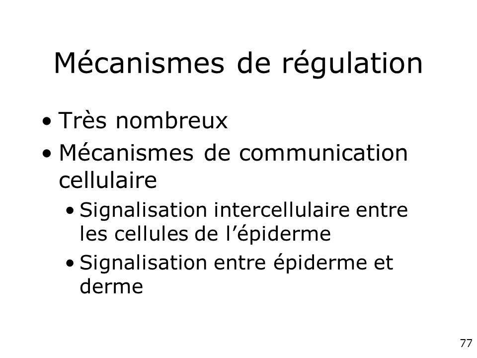 77 Mécanismes de régulation Très nombreux Mécanismes de communication cellulaire Signalisation intercellulaire entre les cellules de lépiderme Signalisation entre épiderme et derme