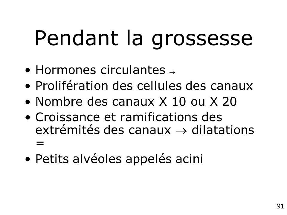 91 Pendant la grossesse Hormones circulantes Prolifération des cellules des canaux Nombre des canaux X 10 ou X 20 Croissance et ramifications des extrémités des canaux dilatations = Petits alvéoles appelés acini