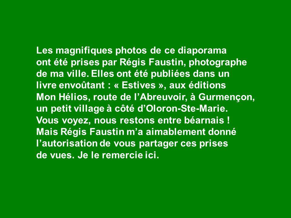 Les magnifiques photos de ce diaporama ont été prises par Régis Faustin, photographe de ma ville.