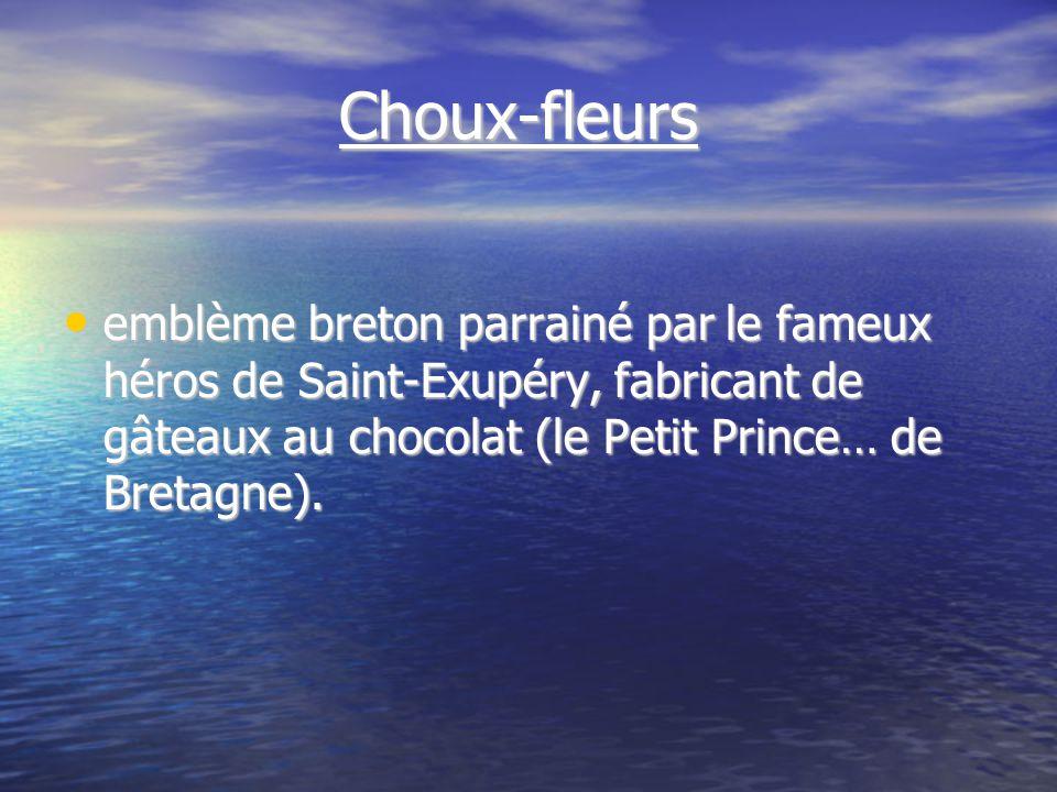 Choux-fleurs Choux-fleurs emblème breton parrainé par le fameux héros de Saint-Exupéry, fabricant de gâteaux au chocolat (le Petit Prince… de Bretagne).