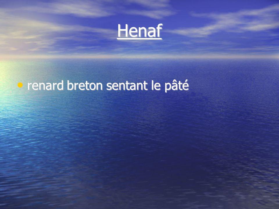 Henaf renard breton sentant le pâté renard breton sentant le pâté