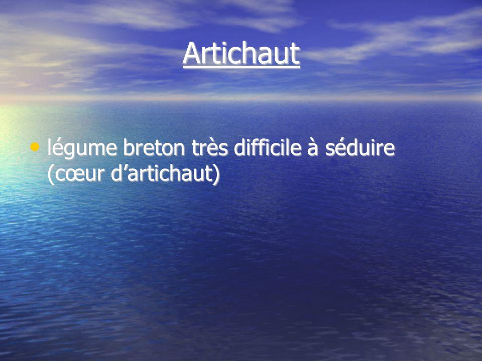 Artichaut légume breton très difficile à séduire (cœur dartichaut) légume breton très difficile à séduire (cœur dartichaut)
