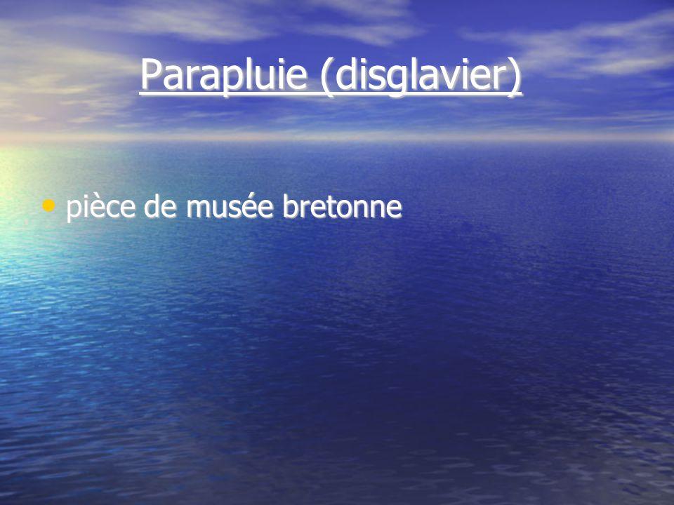 Parapluie (disglavier) Parapluie (disglavier) pièce de musée bretonne pièce de musée bretonne