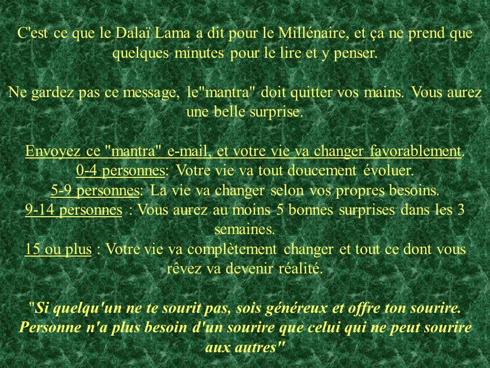 C'est ce que le Dalaï Lama a dit pour le Millénaire, et ça ne prend que quelques minutes pour le lire et y penser. Ne gardez pas ce message, le