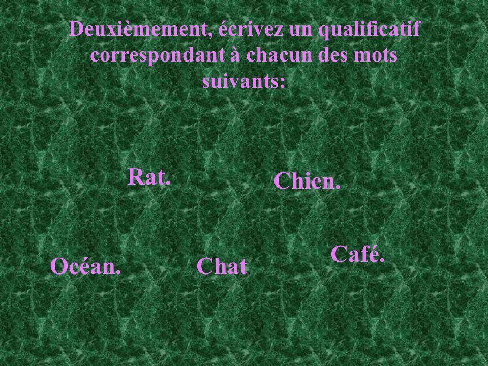 Deuxièmement, écrivez un qualificatif correspondant à chacun des mots suivants: Chien. Chat. Rat. Café. Océan.