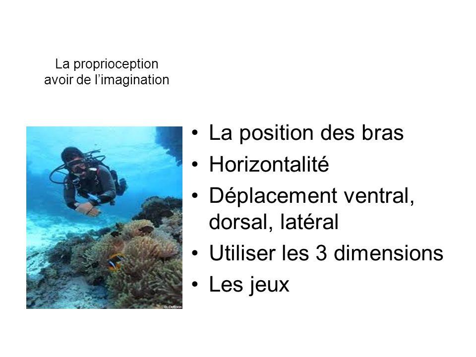 La proprioception avoir de limagination La position des bras Horizontalité Déplacement ventral, dorsal, latéral Utiliser les 3 dimensions Les jeux