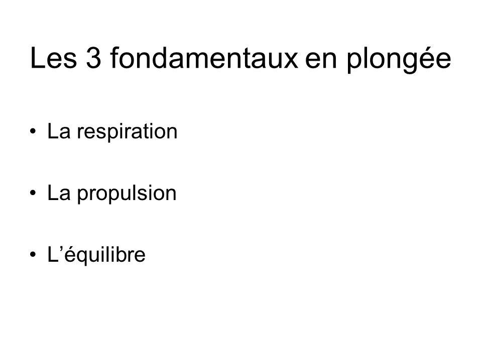 Les 3 fondamentaux en plongée La respiration La propulsion Léquilibre