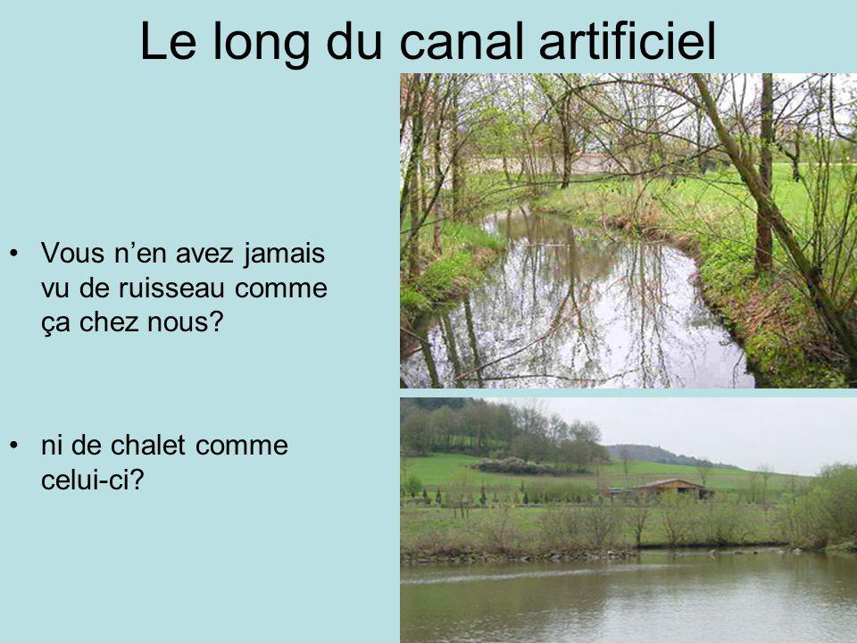 Le long du canal artificiel Vous nen avez jamais vu de ruisseau comme ça chez nous.