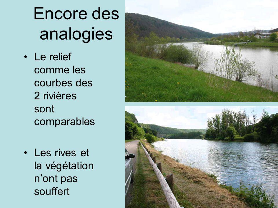 Encore des analogies Le relief comme les courbes des 2 rivières sont comparables Les rives et la végétation nont pas souffert