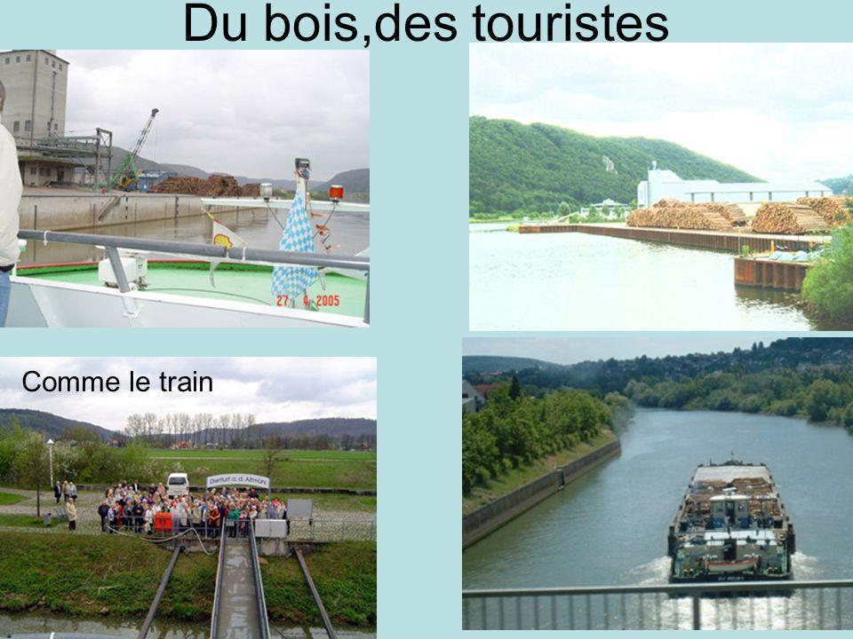 Du bois,des touristes Comme le train