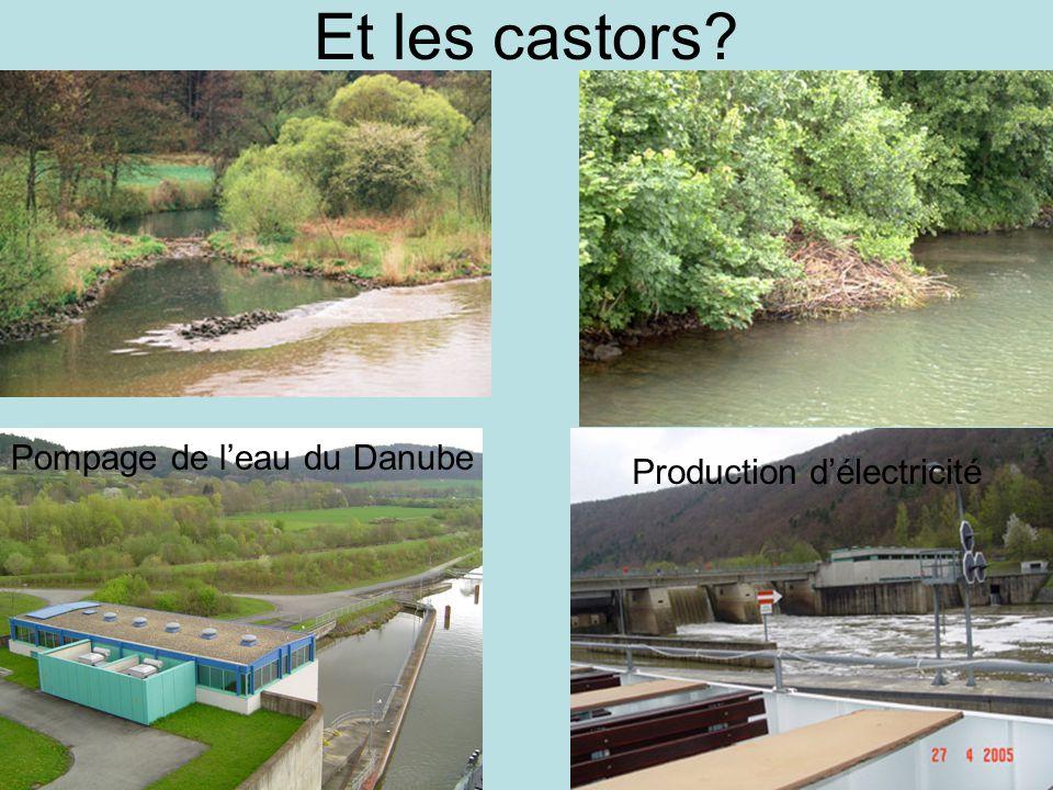 Et les castors? Production délectricité Pompage de leau du Danube