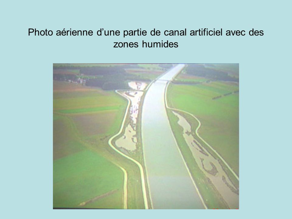 Photo aérienne dune partie de canal artificiel avec des zones humides