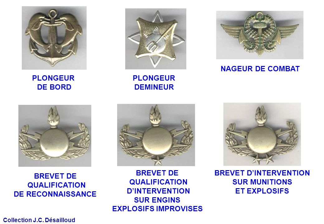 PLONGEUR DE BORD NAGEUR DE COMBAT BREVET DE QUALIFICATION DE RECONNAISSANCE BREVET DE QUALIFICATION DINTERVENTION SUR ENGINS EXPLOSIFS IMPROVISES BREV