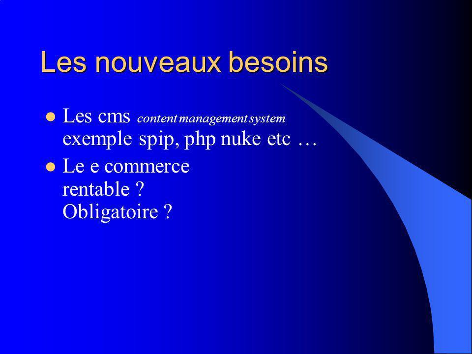 Les nouveaux besoins Les cms content management system exemple spip, php nuke etc … Le e commerce rentable ? Obligatoire ?