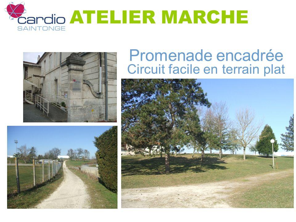 Promenade encadrée Circuit facile en terrain plat ATELIER MARCHE