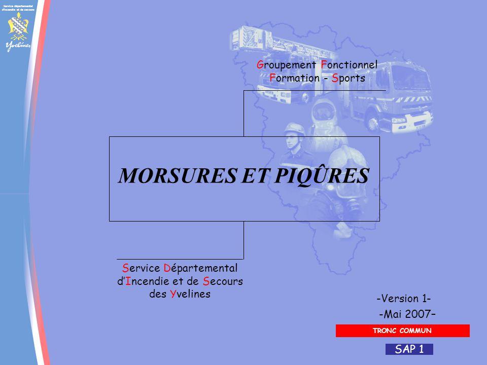 Service départemental d'incendie et de secours Groupement Fonctionnel Formation - Sports Service Départemental dIncendie et de Secours des Yvelines -M