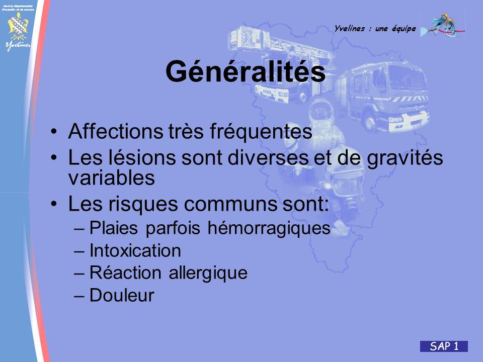 Service départemental d'incendie et de secours Yvelines : une équipe SAP 1 Affections très fréquentes Les lésions sont diverses et de gravités variabl