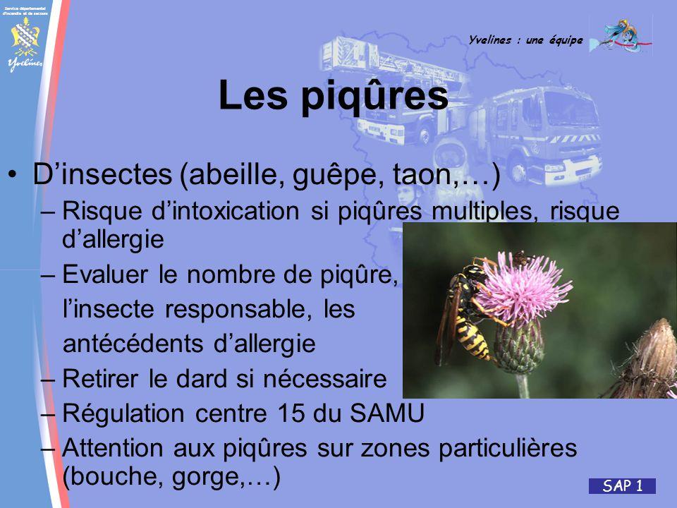 Service départemental d'incendie et de secours Yvelines : une équipe SAP 1 Dinsectes (abeille, guêpe, taon,…) –Risque dintoxication si piqûres multipl