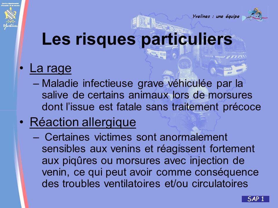 Service départemental d'incendie et de secours Yvelines : une équipe SAP 1 Les risques particuliers La rage –Maladie infectieuse grave véhiculée par l