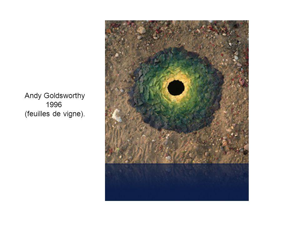 Andy Goldsworthy 1996 (feuilles de vigne).