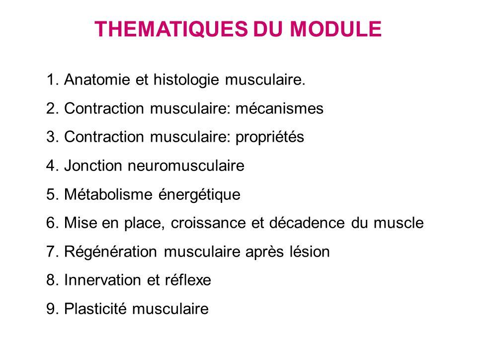 Cours 1 module physiologie neuro-musculaire Anatomie et histologie musculaire I.Présentation du système musculaire II.Le muscle strié squelettique