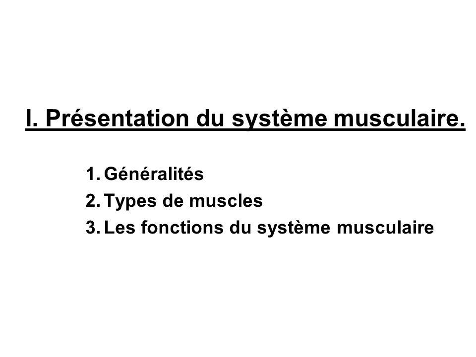 I. Présentation du système musculaire. 1.Généralités 2.Types de muscles 3.Les fonctions du système musculaire