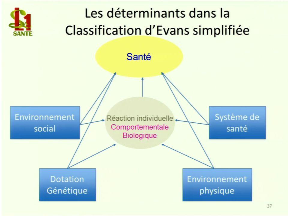 Les déterminants dans la Classification dEvans simplifiée