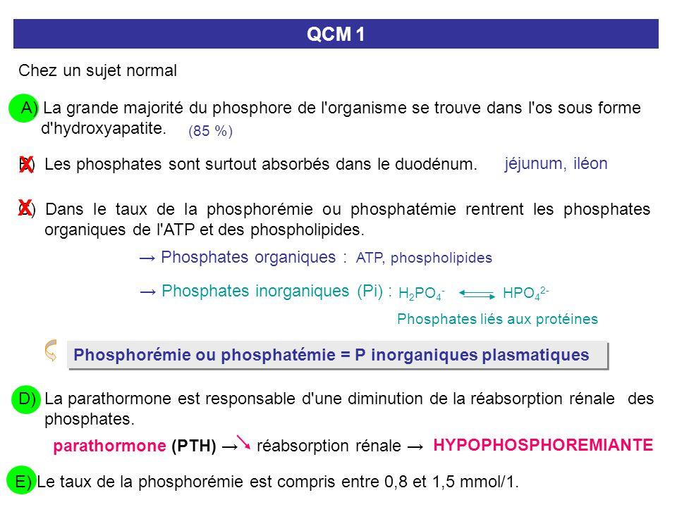 D) La parathormone est responsable d'une diminution de la réabsorption rénale des phosphates. QCM 1 Chez un sujet normal A) La grande majorité du phos