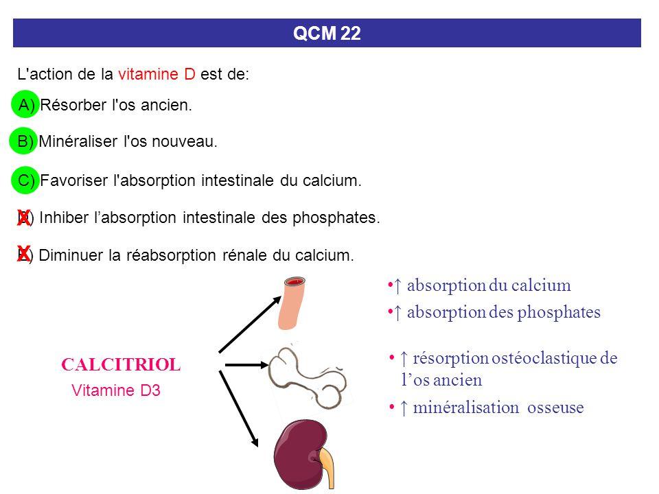 C) Favoriser l'absorption intestinale du calcium. QCM 22 L'action de la vitamine D est de: A) Résorber l'os ancien. B) Minéraliser l'os nouveau. E) Di