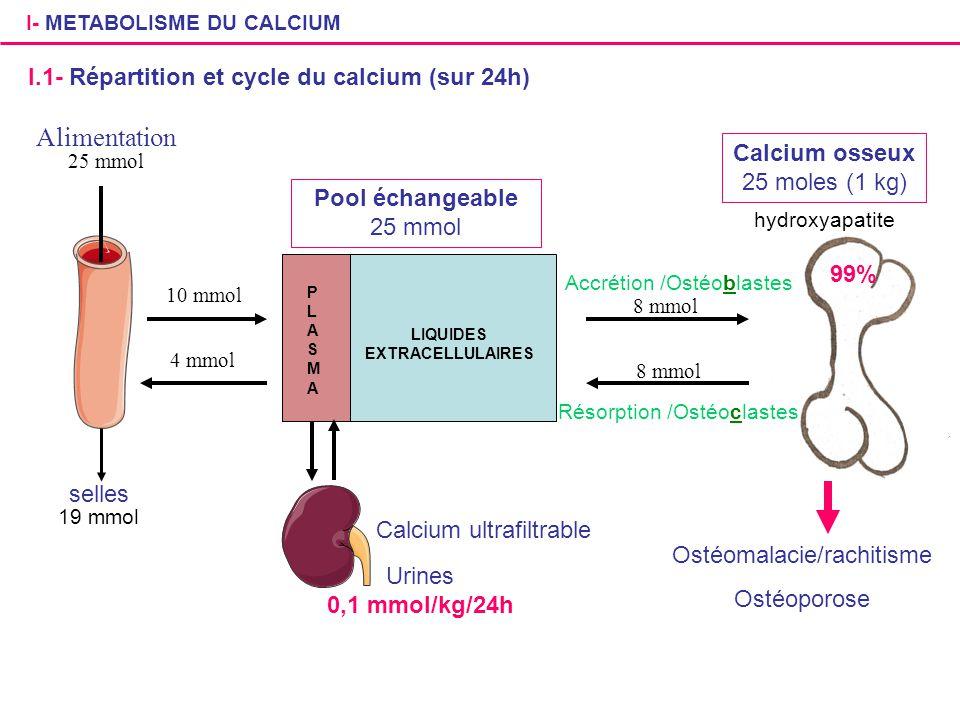I- METABOLISME DU CALCIUM I.1- Répartition et cycle du calcium (sur 24h) Alimentation 25 mmol selles 19 mmol Pool échangeable 25 mmol PLASMAPLASMA LIQ