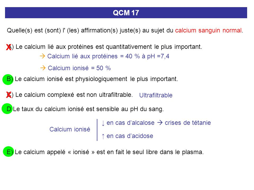 Quelle(s) est (sont) l' (les) affirmation(s) juste(s) au sujet du calcium sanguin normal. QCM 17 D Le taux du calcium ionisé est sensible au pH du san
