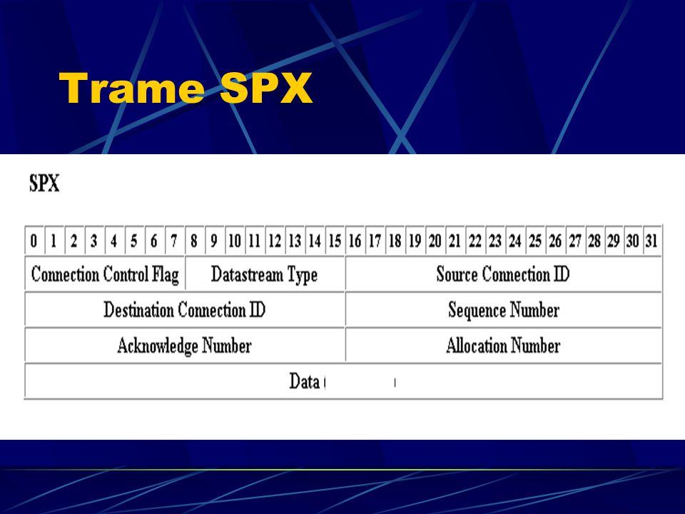 Trame SPX